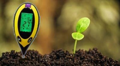 Как измерить ph почвы в домашних условиях